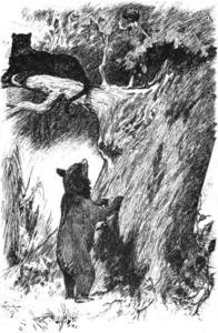 Viidakkopoika-teoksen englanninkielisen painoksen kuvitusta vuodelta 1894.